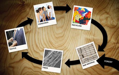 CelluTex – en påverkansplattform för textilmaterial från skogsråvara