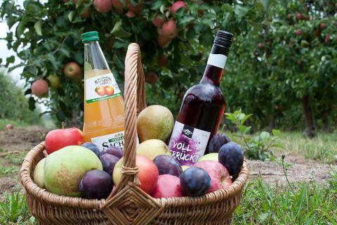 Produktproben aus dem Sächsischen Obstland - Foto: Obstland Dürrweitzschen AG