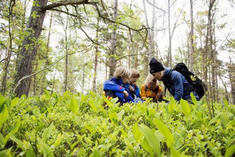 Stor aktivitetsdag arrangeras i nordöstra Göteborgs natur för att främja lokal turism