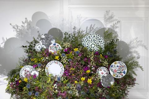 Rosenthal - Magic Garden