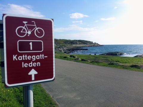 Europas bedste cykelrute ligger i Sverige