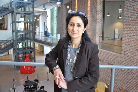 Lisa De Propris, Reader in Regional Economic Development, University of Birmingham