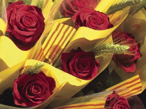 23763 - Roses