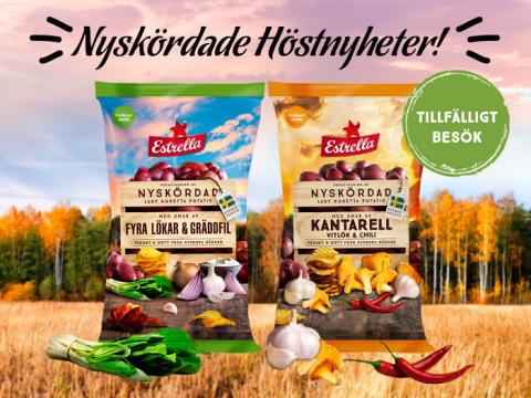 Höstens smaker 2019! Nyskördad Lady Rosetta med Kantarell och Lökar i fokus.