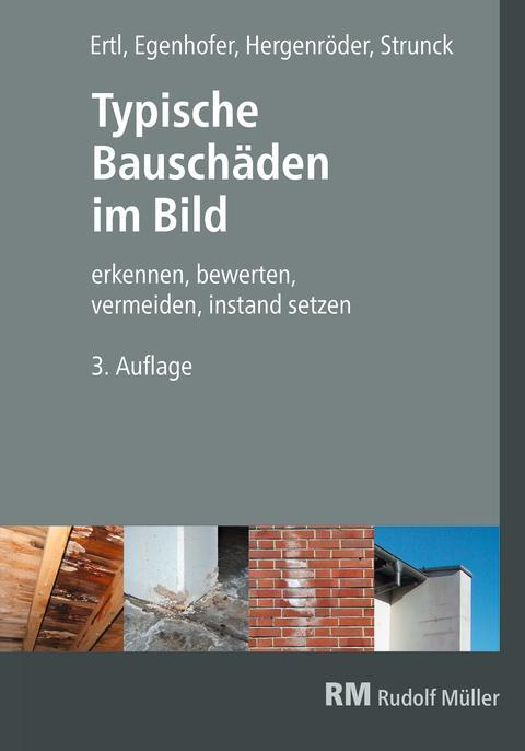 Typische Bauschäden im Bild, 3. Auflage (2D/tif)