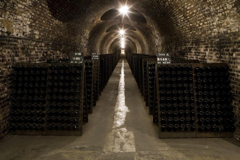 Champagne Ayala cellar