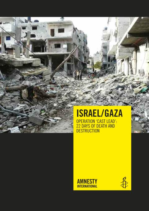 Gaza War Report Death & Destruction