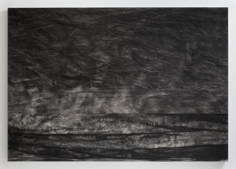 Sam Moyer, Flood Liner I, bläck på duk, 2013