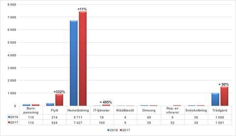 Rut fortsätter slå rekord: hemstädning klart störst och IT-hjälp ökar snabbast