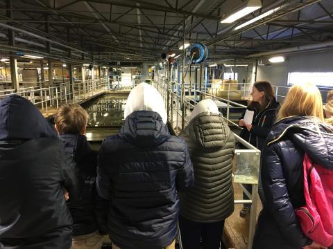 Alla 8:e klassare i Karlskoga besöker reningsverket