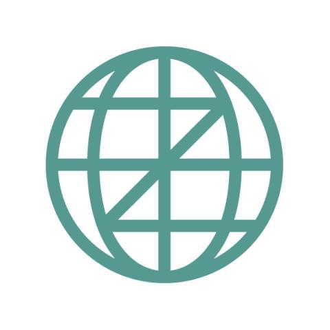 zi_symbol