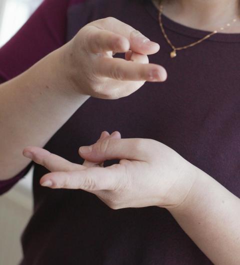 SDR-projekt: Säkra kvalitén på teckenspråkiga webbsidor