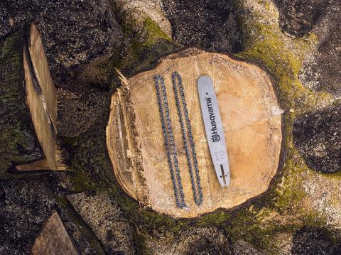 Elmia Wood 2017 Husqvarna X-cut