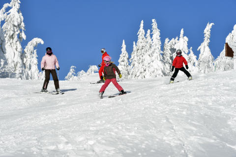 Børn på ski Foto Idre Fjäll