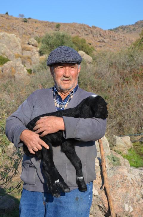 Lindahls nya frontfigur på grekisk yoghurthinken