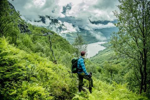 Norwegen nachhaltig erleben – Ideen für einen grünen Urlaub