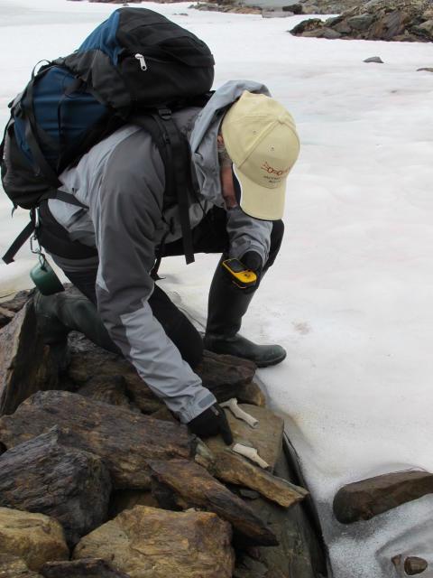 Tusenåriga fynd under smältande glaciärisar