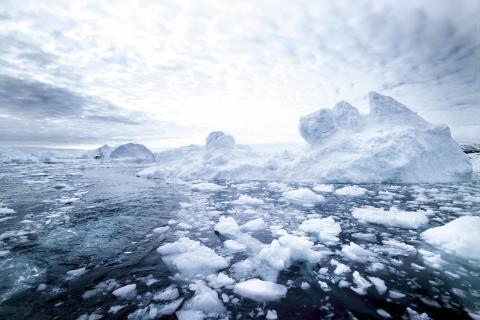Greenland isbillede
