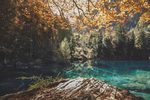 Berner Oberland: Blausee