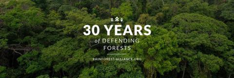 Webinar: Resultat från Rainforest Alliance Impacts Report 2018