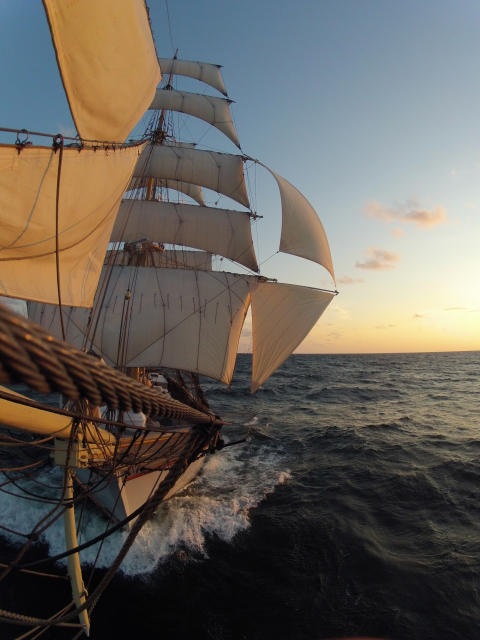 Tre Kronor tog silver i The Tall Ships´ Races