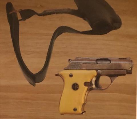 Appeal after James Bond firearms stolen, Enfield