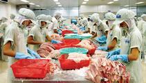 NFI: Congress better repeal catfish program