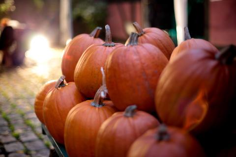 Amerikansk Halloween og Haunted House på Kulturnatten 2014
