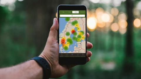 Myggrapporten är appen som håller koll på myggen i sommar