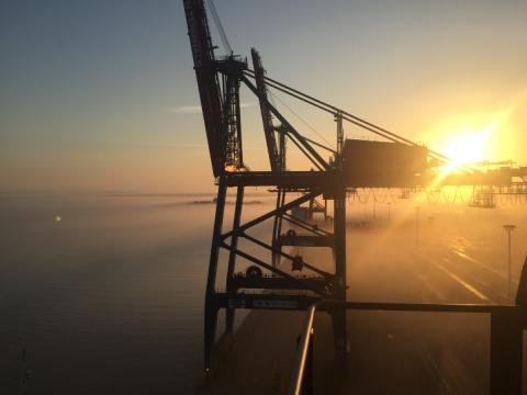 APM Terminals driver aktivt miljöförbättringar - för en hållbar framtid