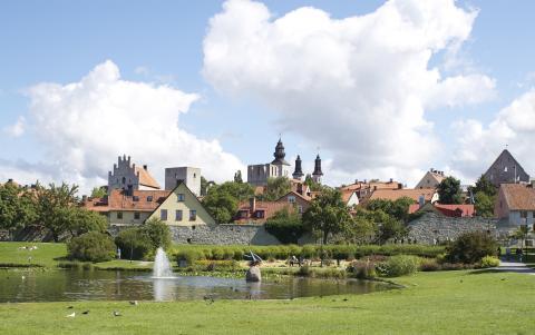 Formas i Almedalen: Vad vinner vi på att internationalisera svensk forskning?