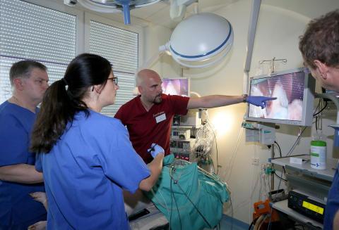 """""""Sicherheitstraining"""" für Chirurgen: Umfassende Weiterbildung senkt Risiken im OP"""