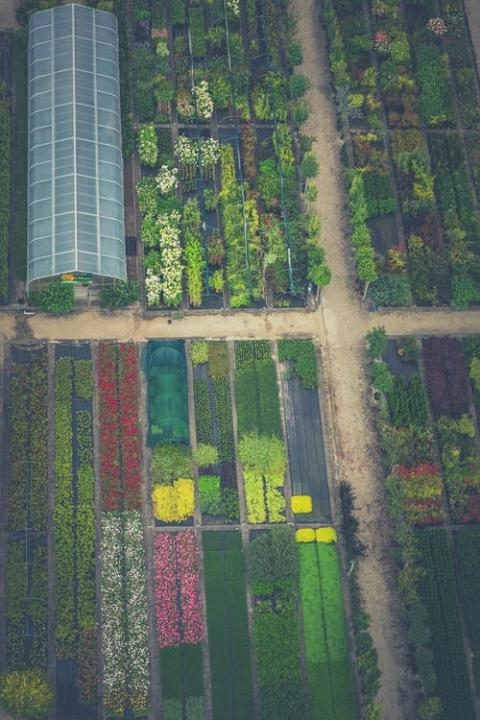 QYResearch: Greenhouse Horticulture Industry Research Report