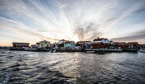 GnarlyCramby Bohuslän