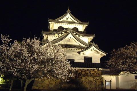 Hikone Dream Illumination