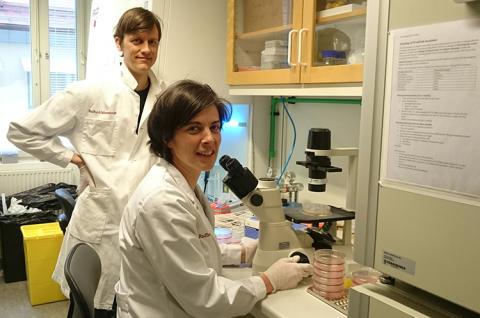 Bromsbehandling i sikte för elakartade hjärnstamstumörer hos barn
