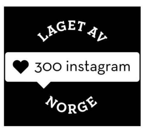 300instagram