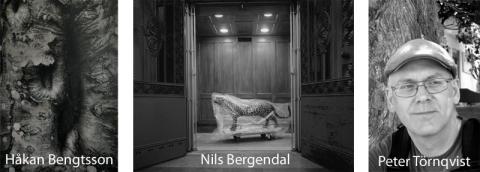 Pressinbjudan: Håkan Bengtsson och Nils Bergendal gästar Växjö konsthall
