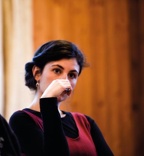 Handlungsfähig in einer komplexen Welt. Goetheanum Studies zielen auf Selbsterkenntnis und Engagement