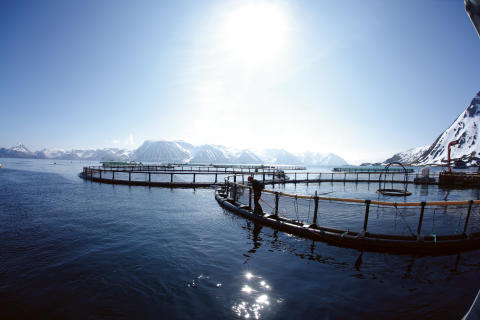 NORGE_IMG_3043