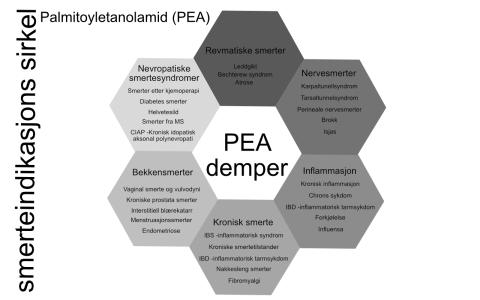 PEA demper flere typer smerte