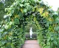 Tusen Trädgårdar 12 augusti 2012 blir landets största trädgårdshändelse