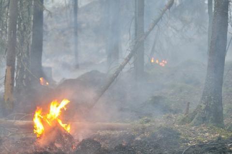 Kostnader för skogsbranden i Västmanland närmar sig en miljard