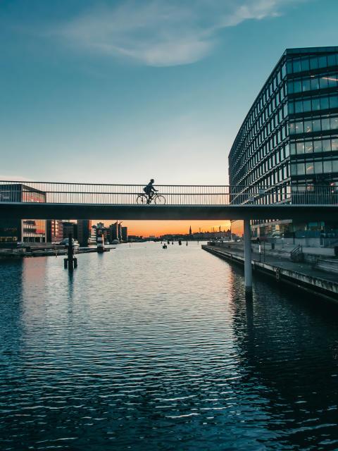 Havneringen i København