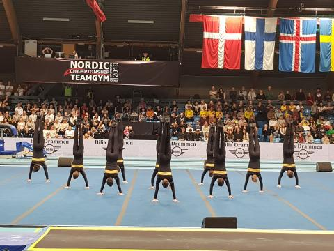Brommagymnasterna NM-silver 2019