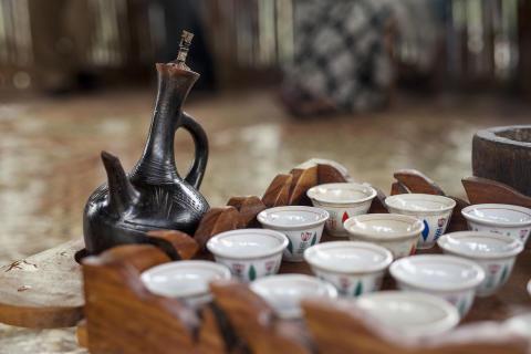 Nespresso Explorations Ethiopia Yirgacheffe 1