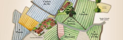 Karta över egendomen - Cordero