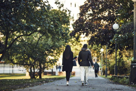 Helsingborgs stad sätter fler i arbete