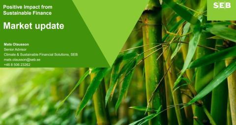 SEB har systematikk for grønne obligasjoner