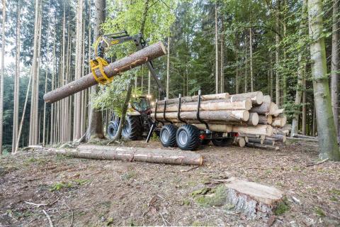 En effektiv kran som lämpar sig för hård och frekvent belastning i skogen.